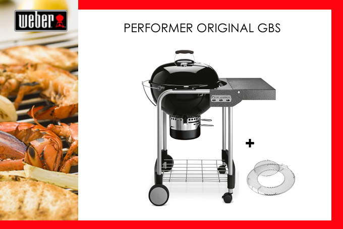 2014-Weber-Performer-Org-GB
