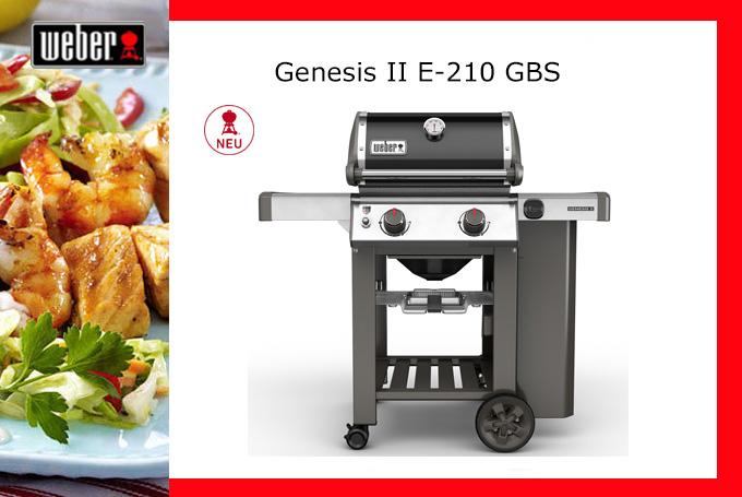 Genesis-II-E-210-GBS