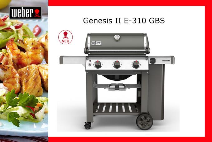 Genesis-II-E-310-GBS